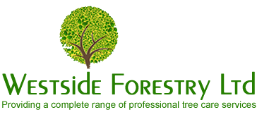 Westside Forestry Ltd